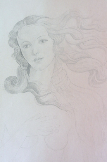 Venus par Rochelle